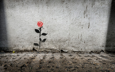 Single rose stencil graffitti on wall in London