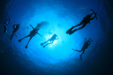Scuba diving. Underwater divers silhouette against sun