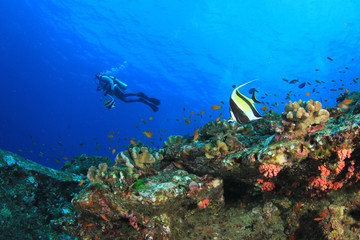 Scuba diving. Divers swim over underwater ocean coral reef