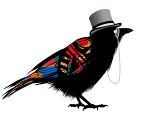 Keuken foto achterwand Art Studio Black raven with hat
