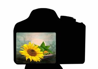 Kamera mit Sonnenblumen Motiv