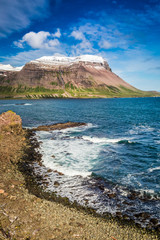 Arctic sea and coastline in Iceland in summer