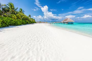 Photo sur Plexiglas Tropical plage Wide sandy beach on a tropical island in Maldives. Palms and wat