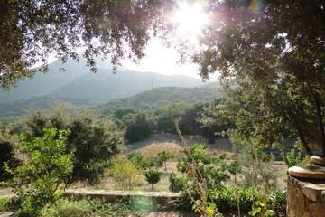 Paysage de Corse