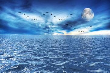 cae la noche sobre el mar azul