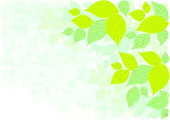 葉 新緑 イメージ 背景 イラスト