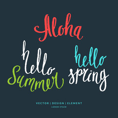 Modern hand drawn lettering word Aloha, hello summer and spring.