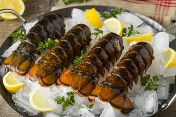 Raw Organic Fresh Lobster Tails