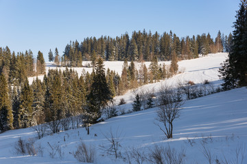 Winter landscape in polish mountains