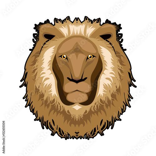 Lion head illustration ,vector