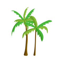 Palm tree isolated vector.