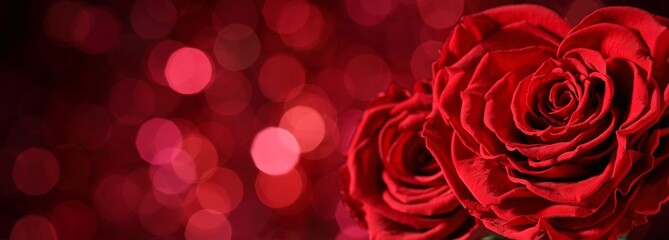 Heart shape of rose on abstract background