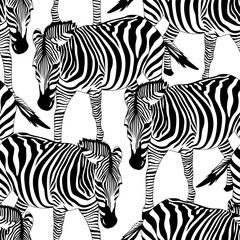 Zebra seamless pattern. Savannah Animal ornament. Wild animal texture, Striped black and white. design trendy fabric texture, vector illustration.