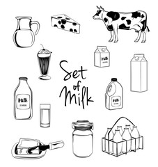 Milk icons set with cow butter cheese isolated vector illustration isolated on white