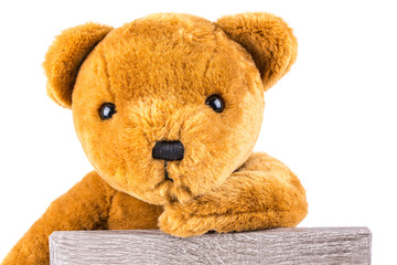 Pensive brown teddy bear leaning on a grey board isolated on a white background
