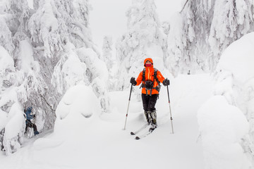 man alone traveling on skis in the snowy winter woods, adventure and recreation concept