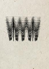 Freehand drawing espalier hop-garden black ink, on beige rice paper background. Beer card.