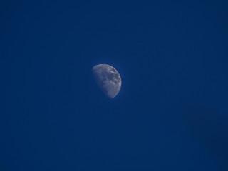 干潟に上る月