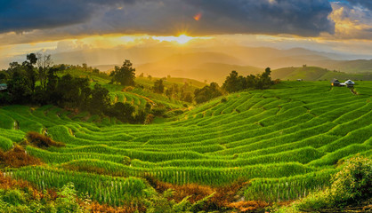 Beautiful sunset over the paddy fields in Pa Pong Pieng , Mae Ch