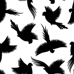 Birds black silhouettes pattern with white background. Vector illustration