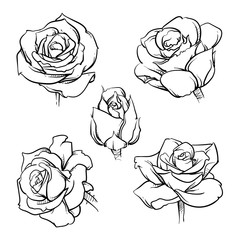 Rose flowers outline vector set, Vector illustration, Clip art