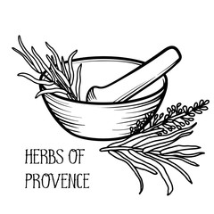 Mortar and pestle. Linear logo illustration. Cooking utensils. To prepare the seasoning. Herbs of Provence. Rosemary and lavender.