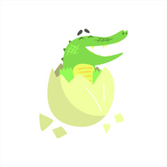 Crocodile Baby Hatching From Egg, Humanized Green Reptile Animal Character Every Day Activity