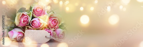 Background panorama with roses