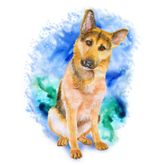Watercolor portrait of German Shepherd breed dog isolated on blue and green background. Hand drawn sweet pet. Bright colors, realistic look. Greeting card design. Clip art. Add your text