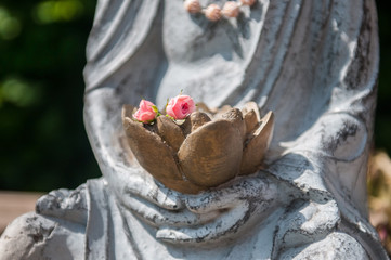 Buddha`s hands with roses
