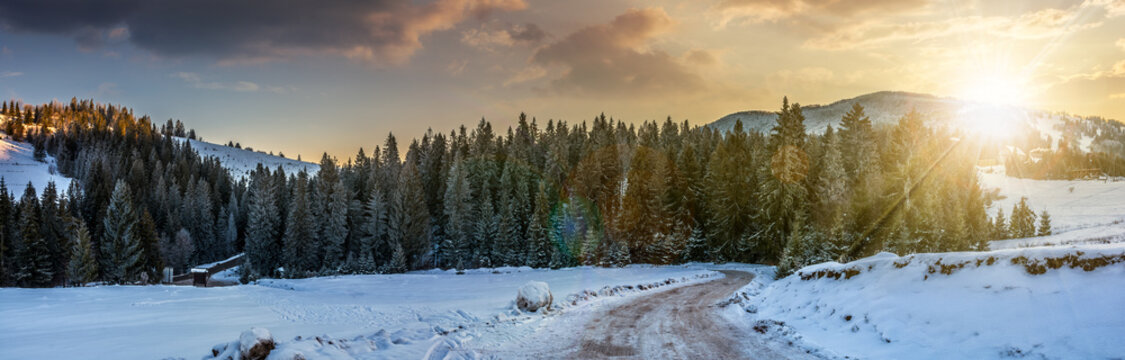 panorama of snowy road through spruce forest in mountains at sun