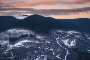 Ukraine. Zakarpatsky region. Evening slopes at Kozmeschika. Deforestation. Save the planet from deforestation