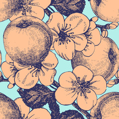 Seamless pattern with hand-drawn Apricot.