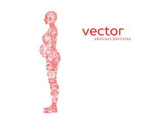 Abstract vector illustration of pregnant woman.