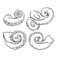 Vector tentacles drawing on a white background. Hand drawn monoc