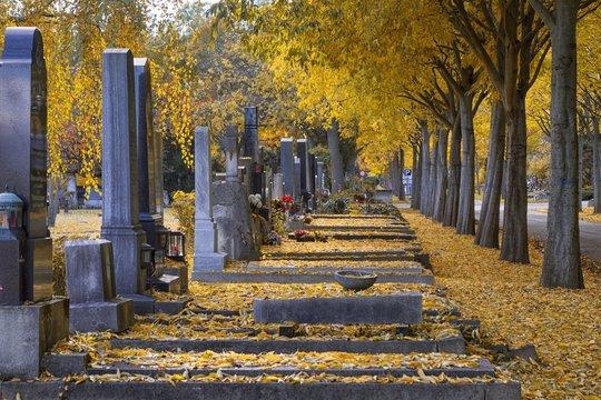 Gräber im Herbst