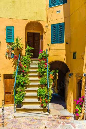 Wall mural House with flower of Capoliveri village in Elba island, Tuscany, Italy, Europe.