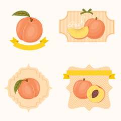 Peach labels and tags