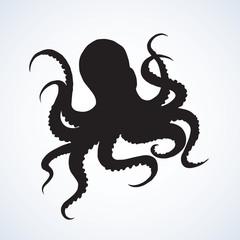 Octopus. Vector drawing