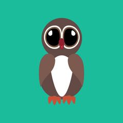 Owl vector illustration