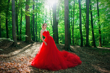 A girl in a long red dress and a royal crown in the foggy forest