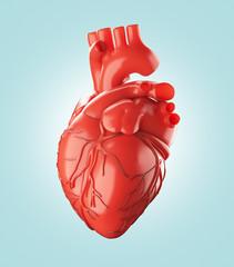 Cuore rosso anatomico con arterie e aorta