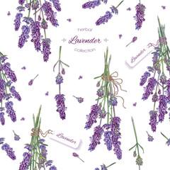 Lavender seamless pattern