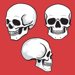 Skull Set Hand Drawing Vector Illustration