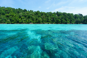 Tropical Island paradise of Thailand, Koh Surin National Park