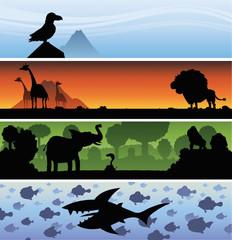 Cartoon nature banner silhouettes featuring a bird, giraffes, an elephant and a shark with fish.