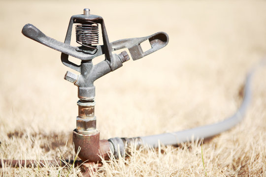Sprinkler in dry grass during a drought