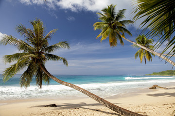 Tropical secluded paradise beach in asia