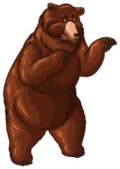 Big bear with brown fur