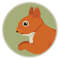 Wild animals collection Squirrel Geometric style icon round